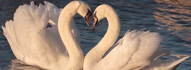 Faire un Top 10 –Romances